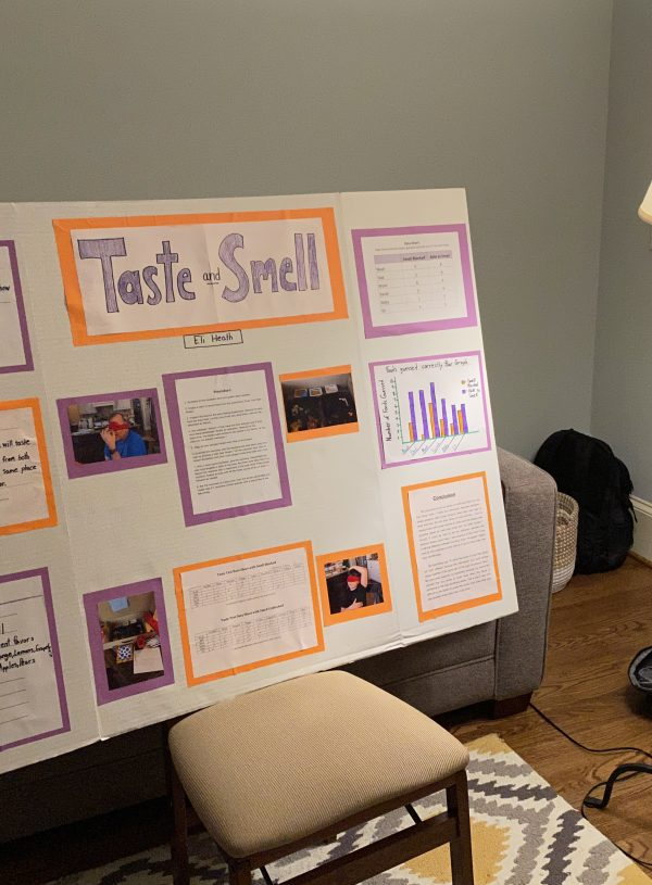 Ode to the Science Fair